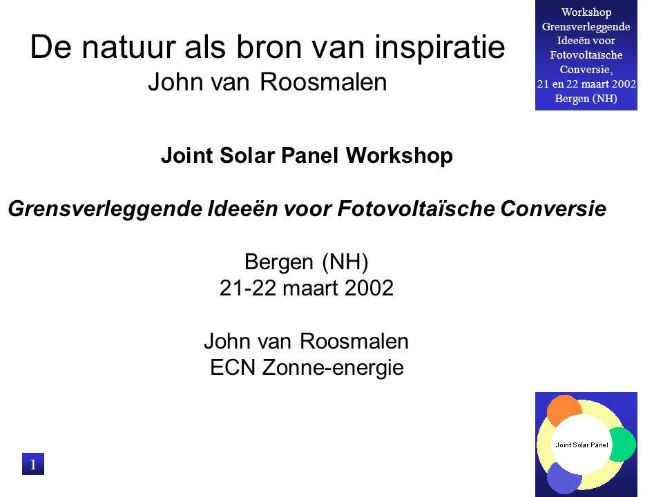 Workshop Grensverleggende Ideeën voor Fotovoltaïsche Conversie, 21 en 22 maart 2002 Bergen (NH) 1 De natuur als bron van inspiratie John van Roosmalen Joint Solar Panel Workshop Grensverleggende Ideeën voor Fotovoltaïsche Conversie Bergen (NH) 21-22 maart 2002 John van Roosmalen ECN Zonne-energie
