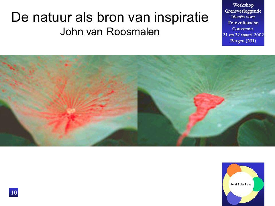 Workshop Grensverleggende Ideeën voor Fotovoltaïsche Conversie, 21 en 22 maart 2002 Bergen (NH) 10 De natuur als bron van inspiratie John van Roosmalen