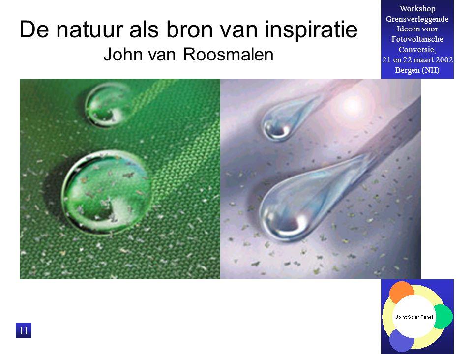 Workshop Grensverleggende Ideeën voor Fotovoltaïsche Conversie, 21 en 22 maart 2002 Bergen (NH) 11 De natuur als bron van inspiratie John van Roosmalen