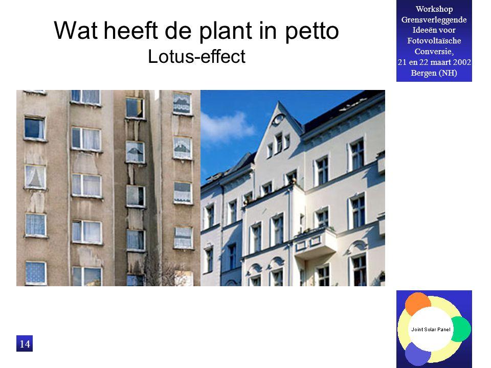 Workshop Grensverleggende Ideeën voor Fotovoltaïsche Conversie, 21 en 22 maart 2002 Bergen (NH) 14 Wat heeft de plant in petto Lotus-effect
