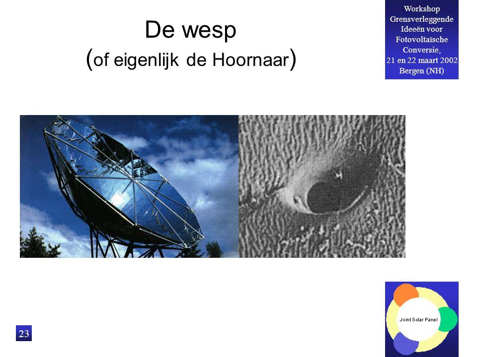 Workshop Grensverleggende Ideeën voor Fotovoltaïsche Conversie, 21 en 22 maart 2002 Bergen (NH) 23 De wesp ( of eigenlijk de Hoornaar )