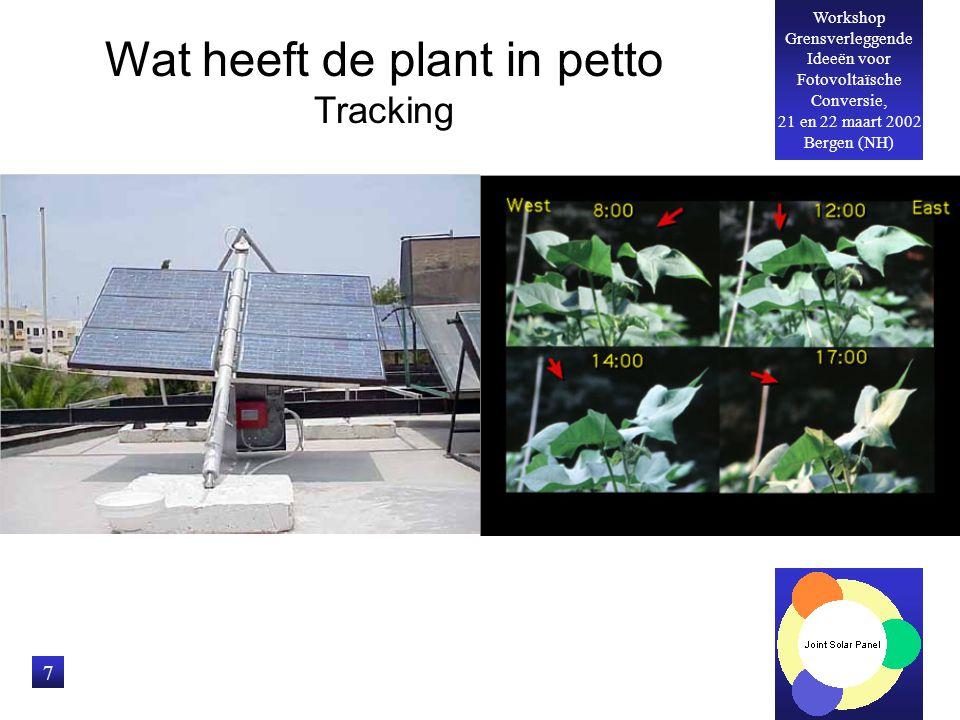 Workshop Grensverleggende Ideeën voor Fotovoltaïsche Conversie, 21 en 22 maart 2002 Bergen (NH) 7 Wat heeft de plant in petto Tracking