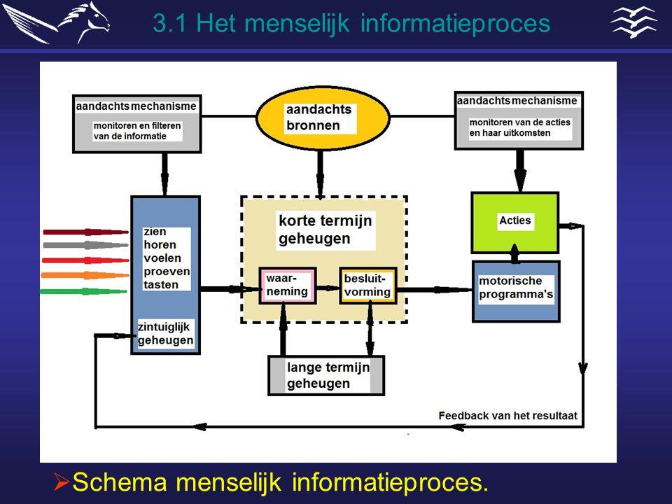  Schema menselijk informatieproces. 3.1 Het menselijk informatieproces