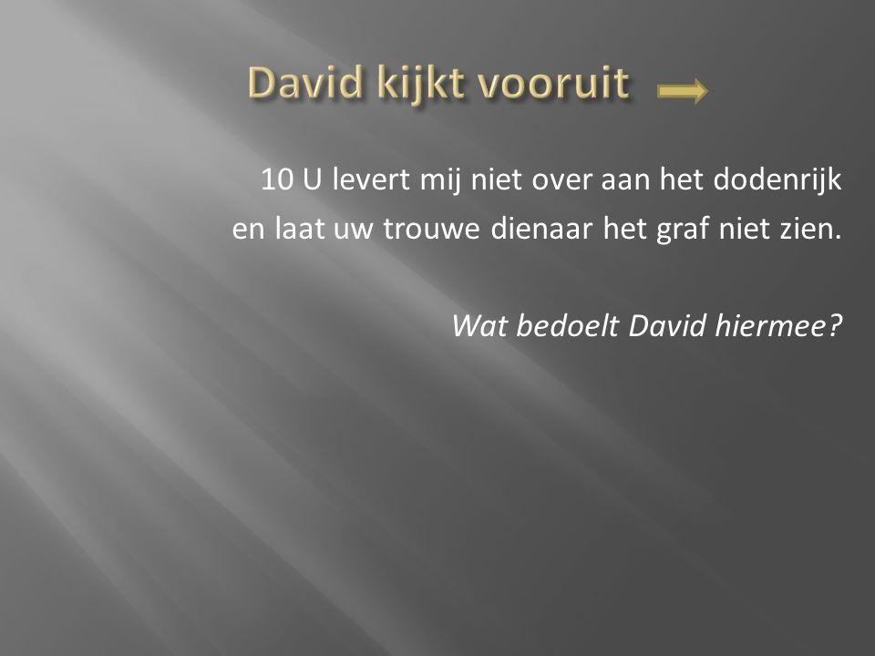 10 U levert mij niet over aan het dodenrijk en laat uw trouwe dienaar het graf niet zien. Wat bedoelt David hiermee?