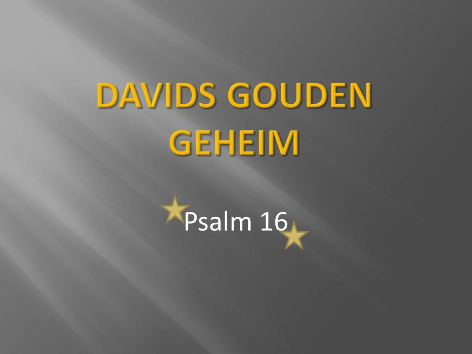 1 Een stil gebed van David.Behoed mij, God, ik schuil bij u.