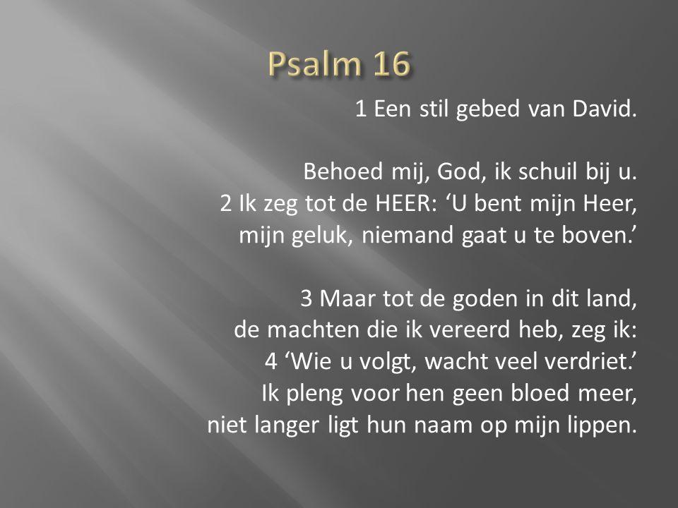 1 Een stil gebed van David. Behoed mij, God, ik schuil bij u. 2 Ik zeg tot de HEER: 'U bent mijn Heer, mijn geluk, niemand gaat u te boven.' 3 Maar to