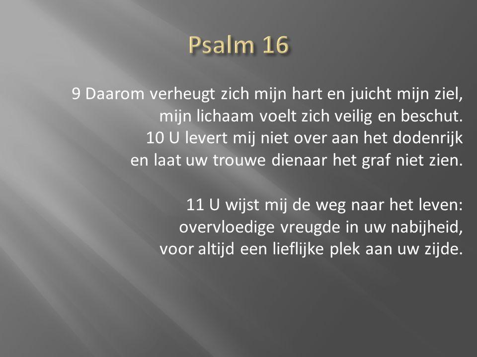 9 Daarom verheugt zich mijn hart en juicht mijn ziel, mijn lichaam voelt zich veilig en beschut. 10 U levert mij niet over aan het dodenrijk en laat u