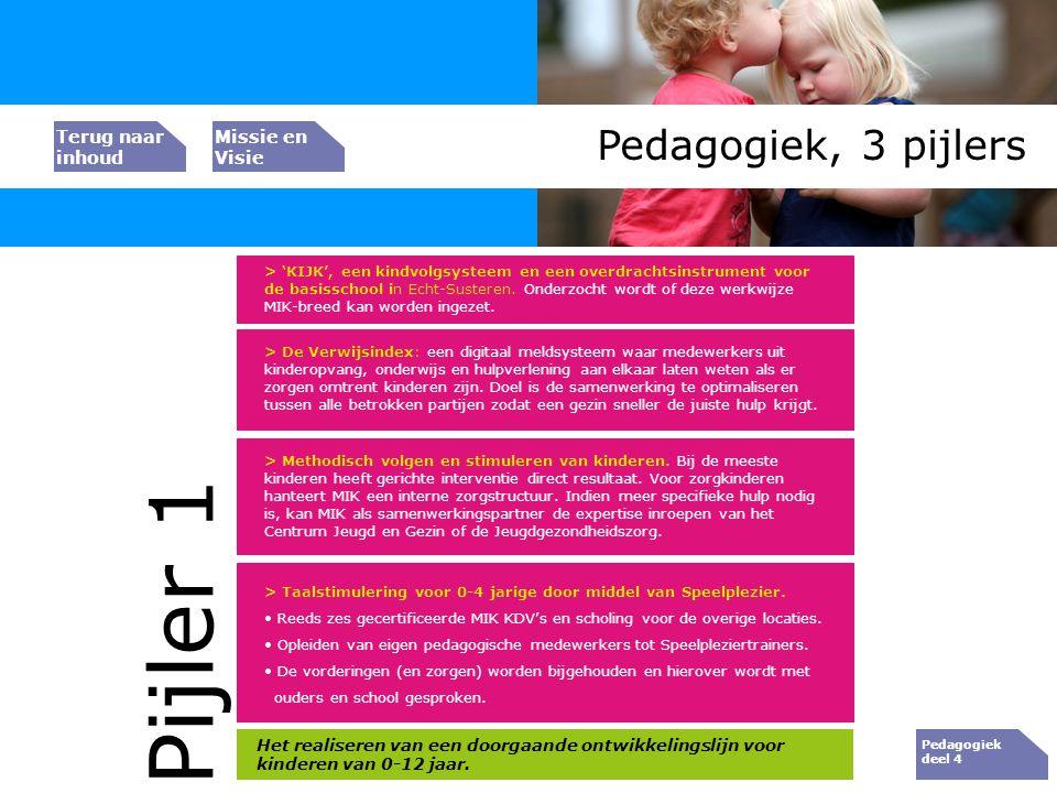 Bedrijfs resultaat Pedagogiek, 3 pijlers > De Verwijsindex: een digitaal meldsysteem waar medewerkers uit kinderopvang, onderwijs en hulpverlening aan