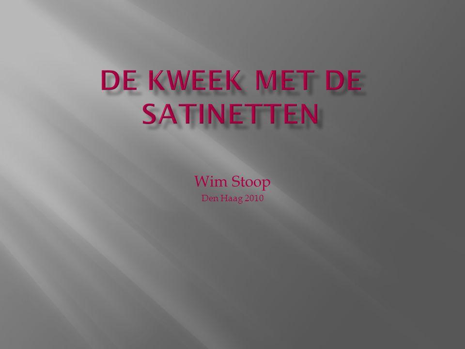 Wim Stoop Den Haag 2010
