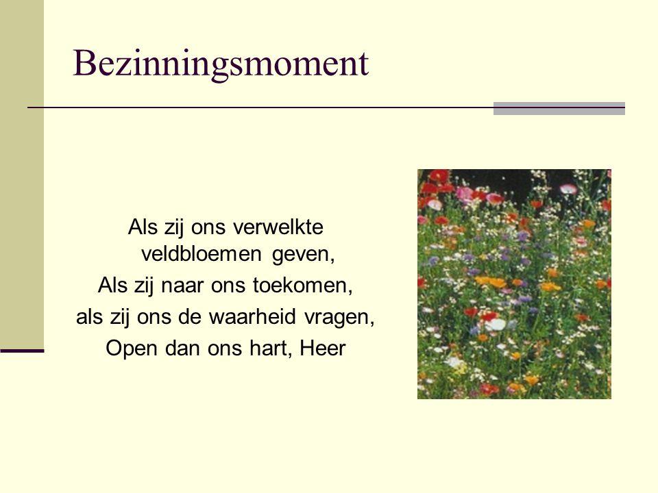 Bezinningsmoment Als zij ons verwelkte veldbloemen geven, Als zij naar ons toekomen, als zij ons de waarheid vragen, Open dan ons hart, Heer