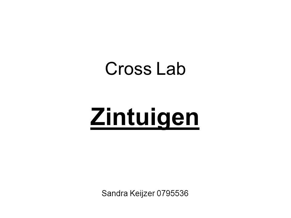 Cross Lab Zintuigen Sandra Keijzer 0795536