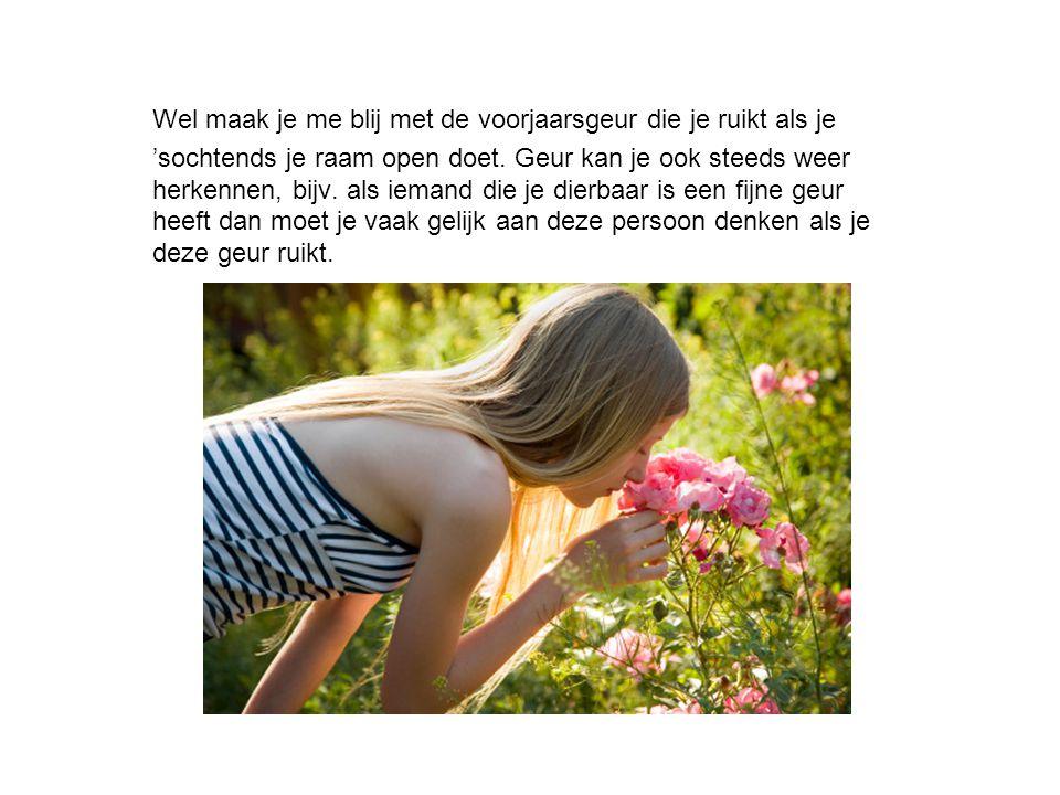 Wel maak je me blij met de voorjaarsgeur die je ruikt als je 'sochtends je raam open doet. Geur kan je ook steeds weer herkennen, bijv. als iemand die