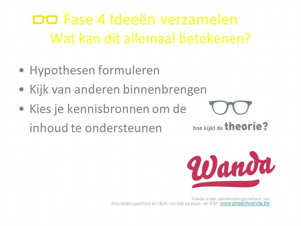 Wanda is een samenwerkingsverband van Arteveldehogeschool en VBJK vzw met de steun van ESF. www.projectwanda.be www.projectwanda.be Fase 4 Ideeën verz