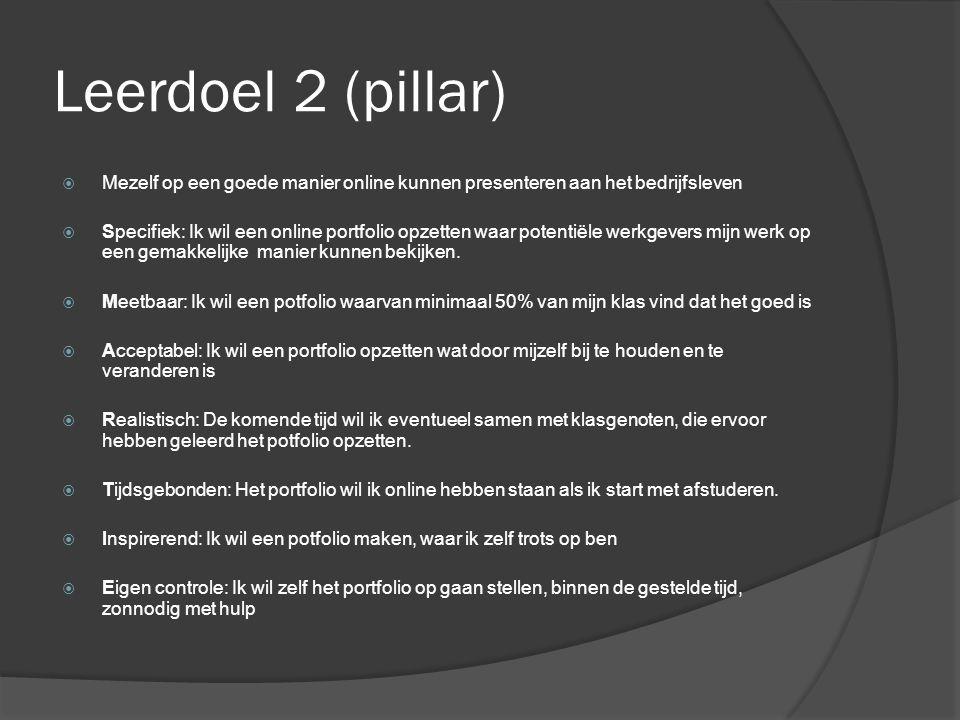 Leerdoel 2 (pillar)  Mezelf op een goede manier online kunnen presenteren aan het bedrijfsleven  Specifiek: Ik wil een online portfolio opzetten waar potentiële werkgevers mijn werk op een gemakkelijke manier kunnen bekijken.
