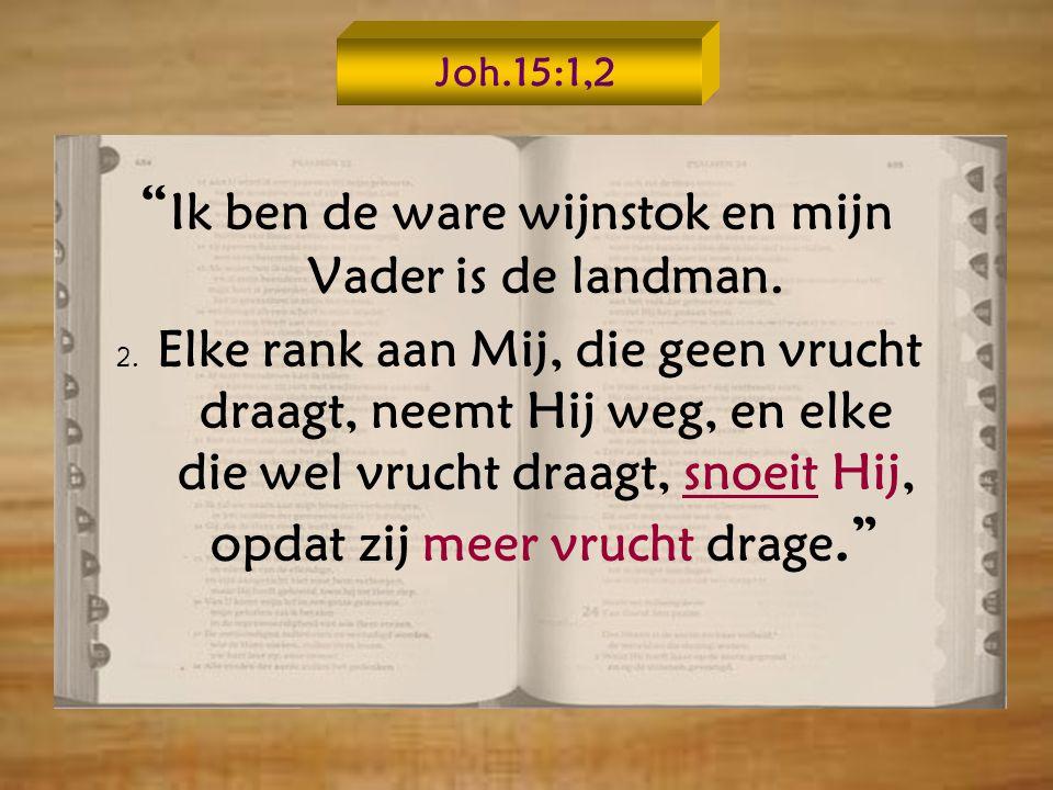 Joh.15:1,2 Ik ben de ware wijnstok en mijn Vader is de landman.