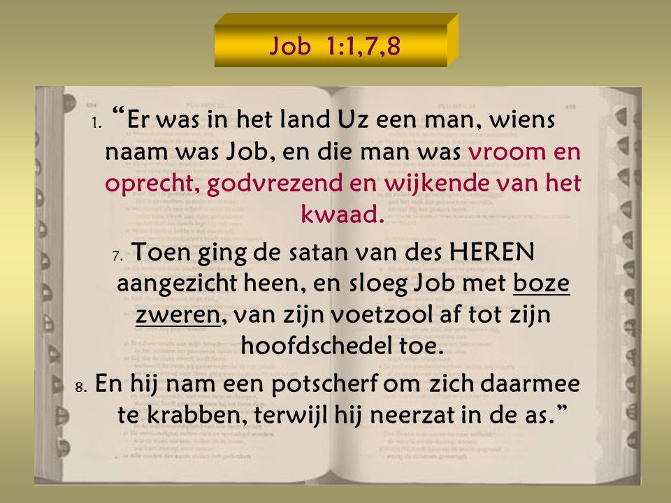 Job 1:1,7,8 1.