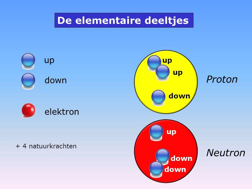 up down elektron De elementaire deeltjes Proton up down Neutron down up + 4 natuurkrachten