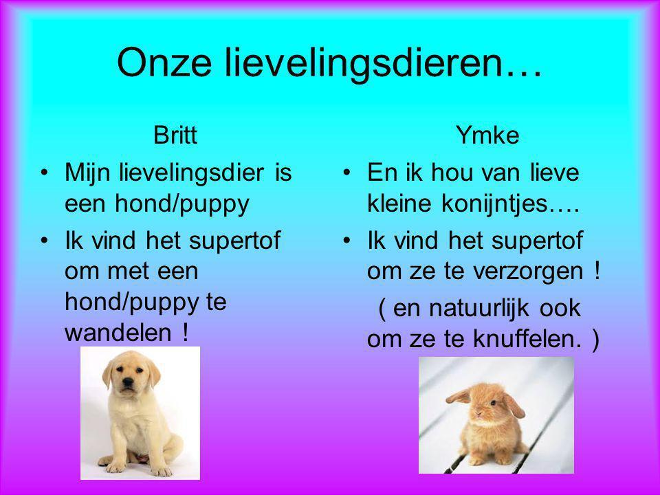 Onze lievelingsdieren… Britt Mijn lievelingsdier is een hond/puppy Ik vind het supertof om met een hond/puppy te wandelen ! Ymke En ik hou van lieve k