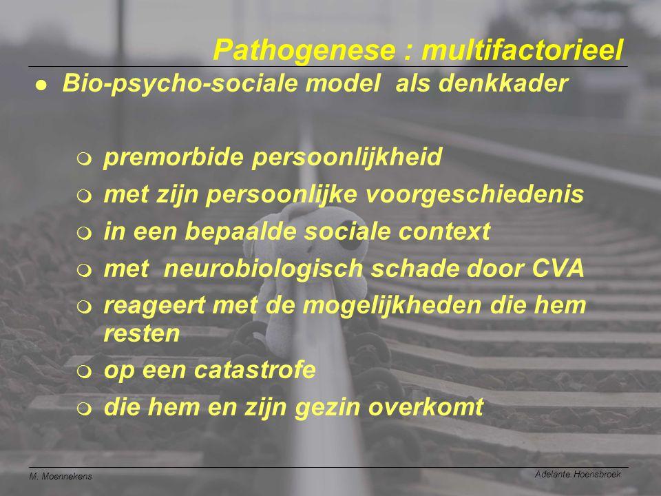M. Moennekens Adelante Hoensbroek Pathogenese : multifactorieel l Bio-psycho-sociale model als denkkader  premorbide persoonlijkheid  met zijn perso