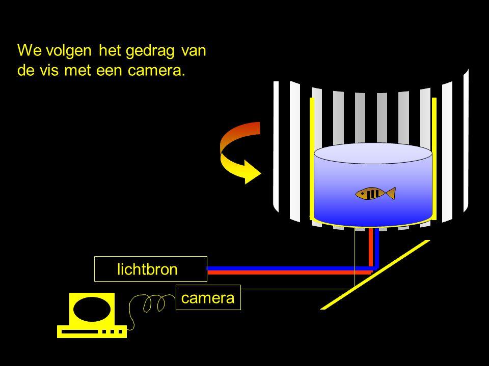 lichtbron camera In een donkere kamer zit een vis in een rond aquarium. Om het aquarium draait een patroon van zwarte en witte strepen. De opstelling