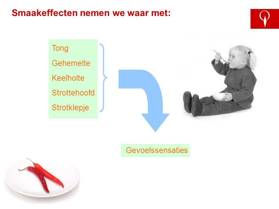 S-889B-4 Smaakeffecten nemen we waar met: Gevoelssensaties Tong Gehemelte Keelholte Strottehoofd Strotklepje