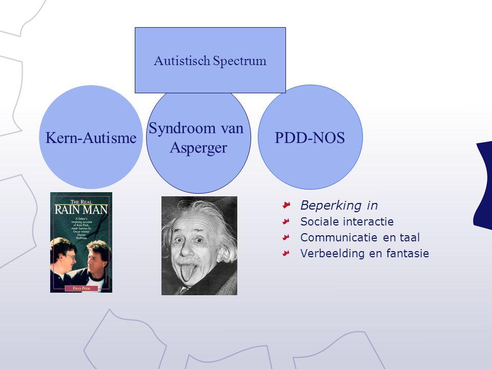 Kern-Autisme Syndroom van Asperger PDD-NOS Autistisch Spectrum Beperking in Sociale interactie Communicatie en taal Verbeelding en fantasie
