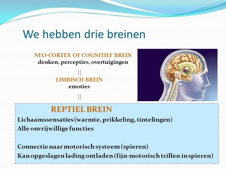 REPTIEL BREIN Lichaamssensaties (warmte, prikkeling, tintelingen) Alle onvrijwillige functies Connectie naar motorisch systeem (spieren) Kan opgeslagen lading ontladen (fijn-motorisch trillen in spieren) We hebben drie breinen LIMBISCH BREIN emoties NEO-CORTEX OF COGNITIEF BREIN denken, percepties, overtuigingen ||