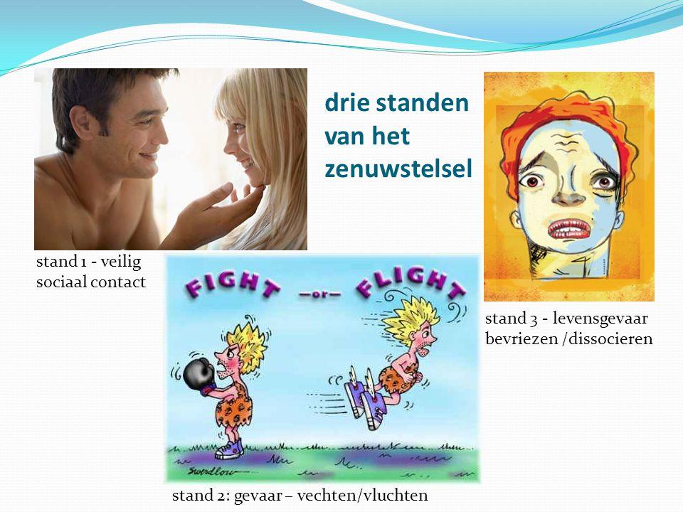drie standen van het zenuwstelsel stand 1 - veilig sociaal contact stand 2: gevaar – vechten/vluchten stand 3 - levensgevaar bevriezen /dissocieren