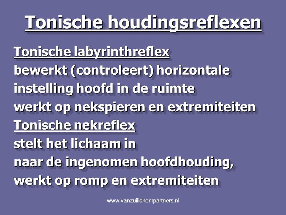 www.vanzuilichempartners.nl