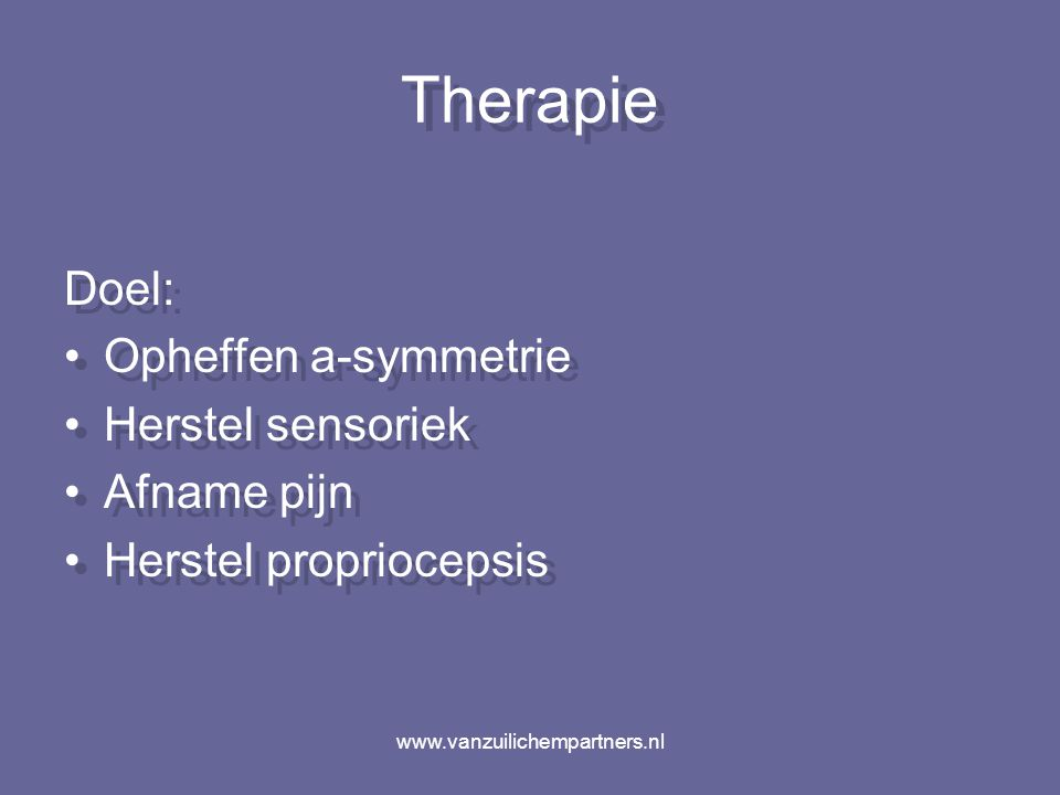 www.vanzuilichempartners.nl hersenstam C0-C3 gewrichtssensoren spierspoelen Functiepathologisch substraat manuele therapie