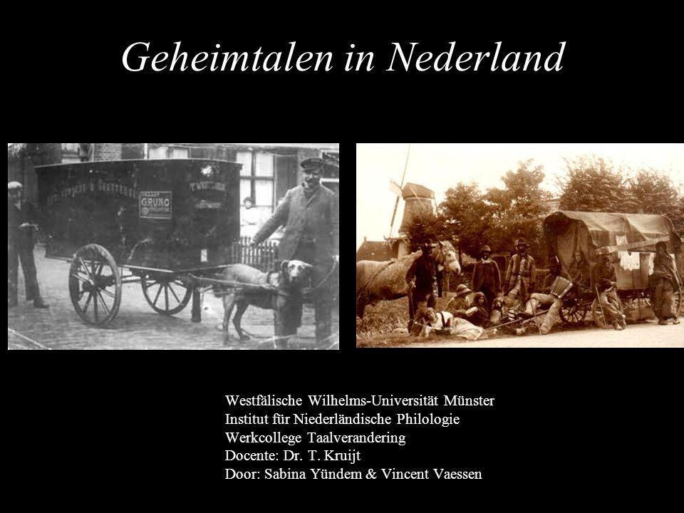 Geheimtalen in Nederland Westfälische Wilhelms-Universität Münster Institut für Niederländische Philologie Werkcollege Taalverandering Docente: Dr. T.