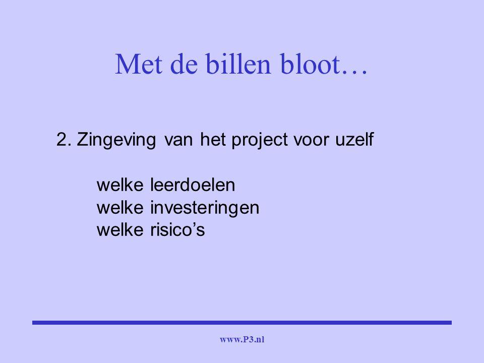 www.P3.nl 2. Zingeving van het project voor uzelf welke leerdoelen welke investeringen welke risico's Met de billen bloot…