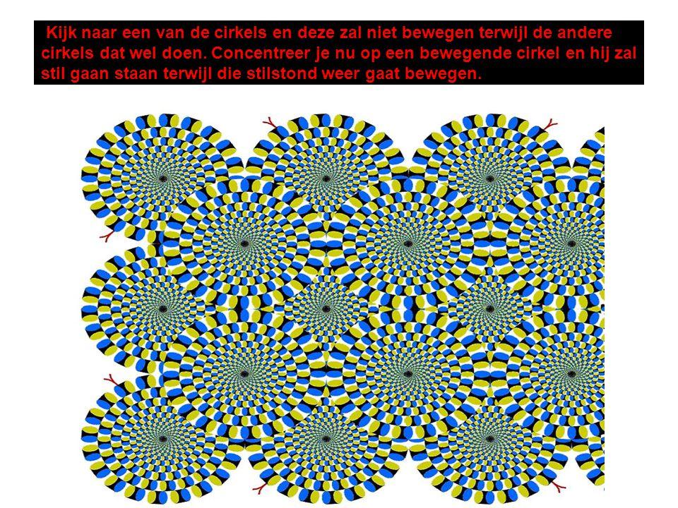 Kijk naar een van de cirkels en deze zal niet bewegen terwijl de andere cirkels dat wel doen. Concentreer je nu op een bewegende cirkel en hij zal sti