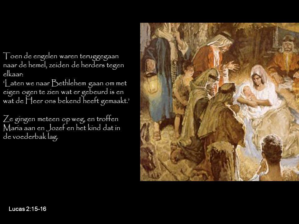 Toen de engelen waren teruggegaan naar de hemel, zeiden de herders tegen elkaar: 'Laten we naar Bethlehem gaan om met eigen ogen te zien wat er gebeur