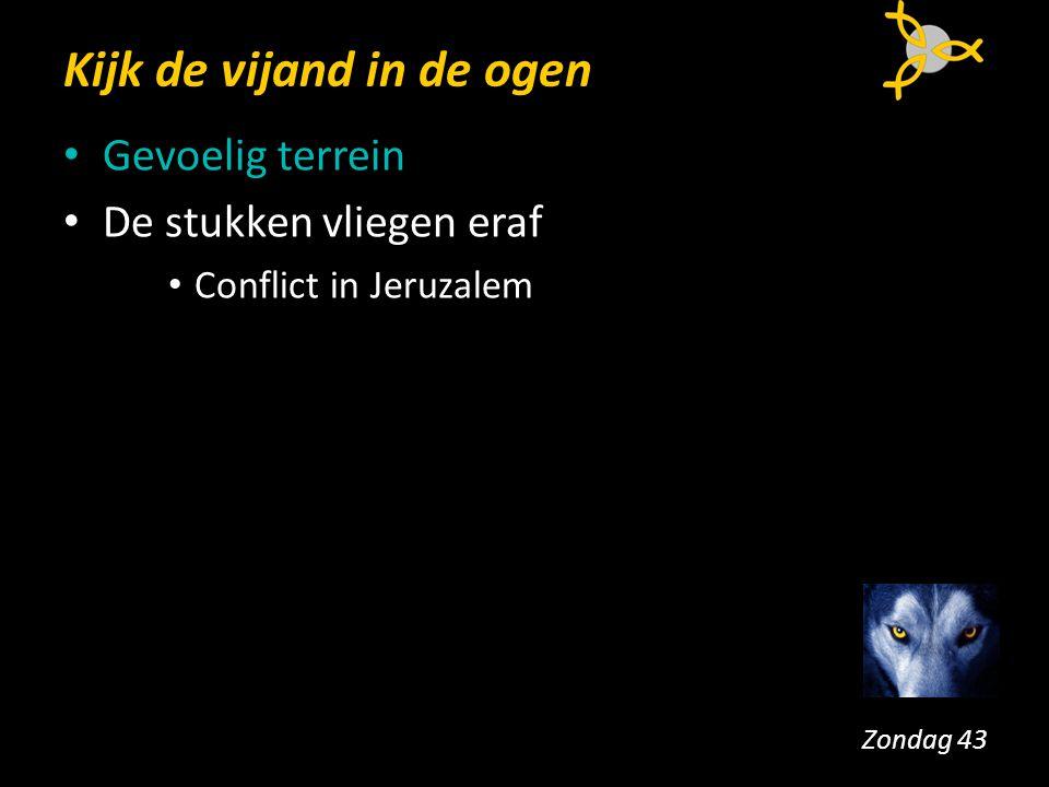 Kijk de vijand in de ogen Gevoelig terrein De stukken vliegen eraf Conflict in Jeruzalem > besluit, vrede Zondag 43