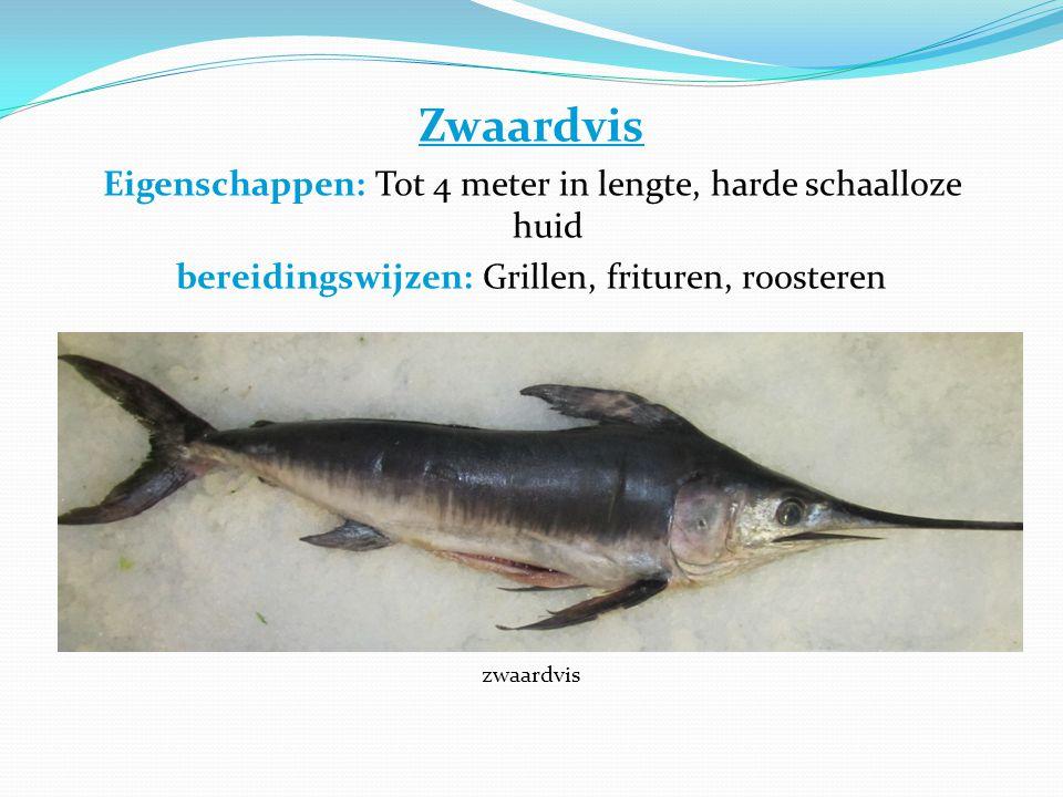 Zwaardvis Eigenschappen: Tot 4 meter in lengte, harde schaalloze huid bereidingswijzen: Grillen, frituren, roosteren zwaardvis