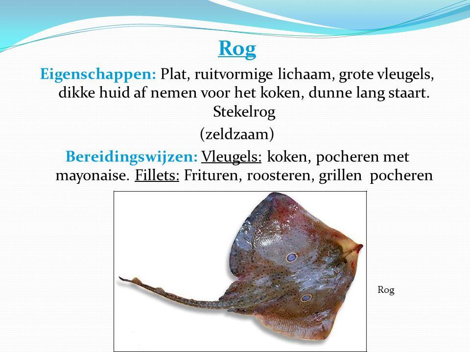 Rog Eigenschappen: Plat, ruitvormige lichaam, grote vleugels, dikke huid af nemen voor het koken, dunne lang staart.