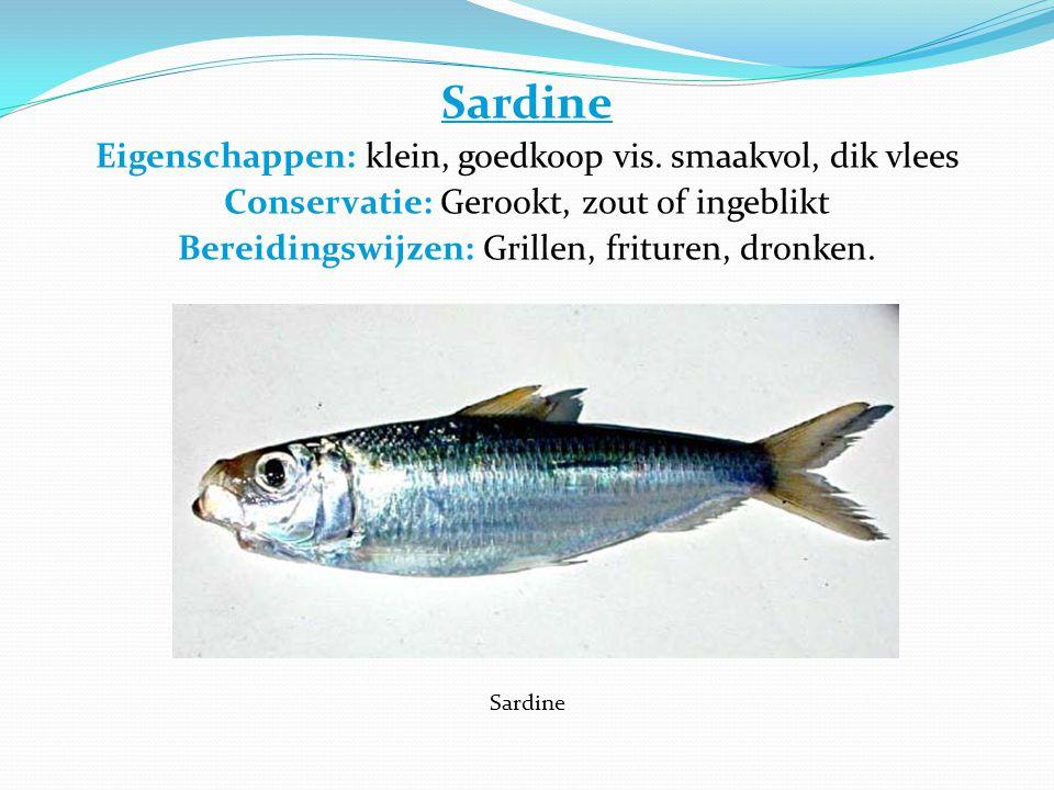 Sardine Eigenschappen: klein, goedkoop vis.