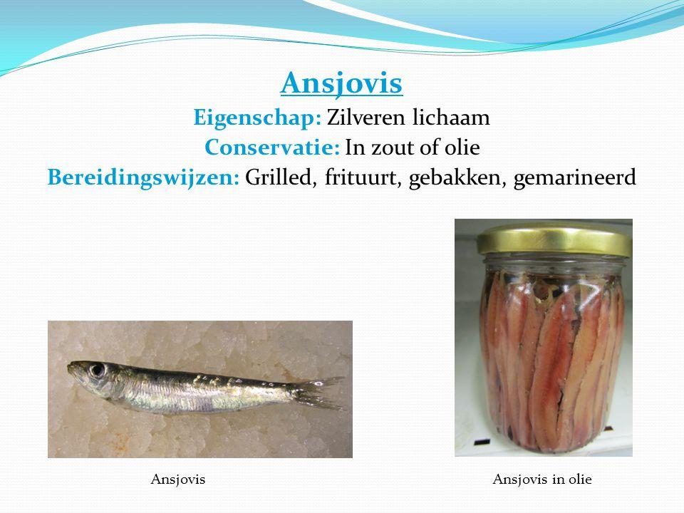 Ansjovis Eigenschap: Zilveren lichaam Conservatie: In zout of olie Bereidingswijzen: Grilled, frituurt, gebakken, gemarineerd Anchovies Ansjovis Ansjovis in olie
