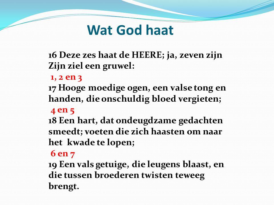 Wat God haat 16 Deze zes haat de HEERE; ja, zeven zijn Zijn ziel een gruwel: 1, 2 en 3 17 Hooge moedige ogen, een valse tong en handen, die onschuldig bloed vergieten; 4 en 5 18 Een hart, dat ondeugdzame gedachten smeedt; voeten die zich haasten om naar het kwade te lopen; 6 en 7 19 Een vals getuige, die leugens blaast, en die tussen broederen twisten teweeg brengt.