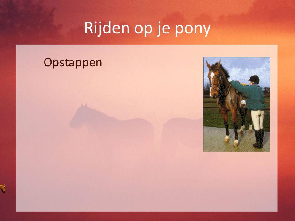 Rijden op je pony Opstappen