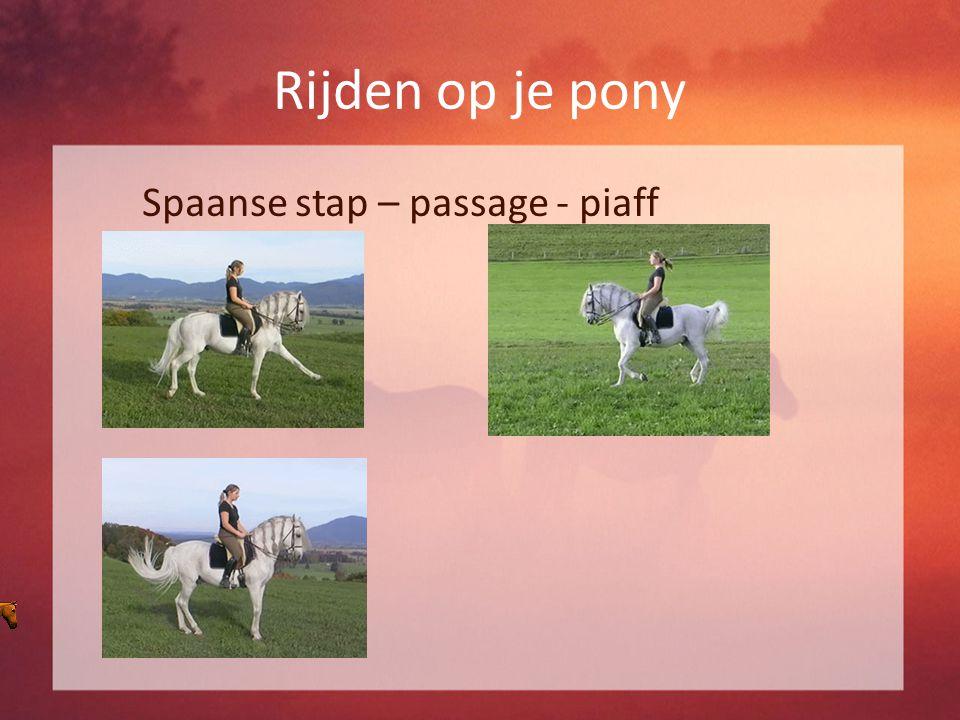 Rijden op je pony Spaanse stap – passage - piaff