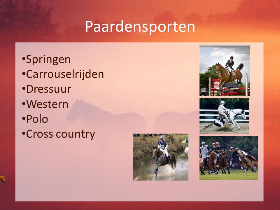 Paardensporten Springen Carrouselrijden Dressuur Western Polo Cross country