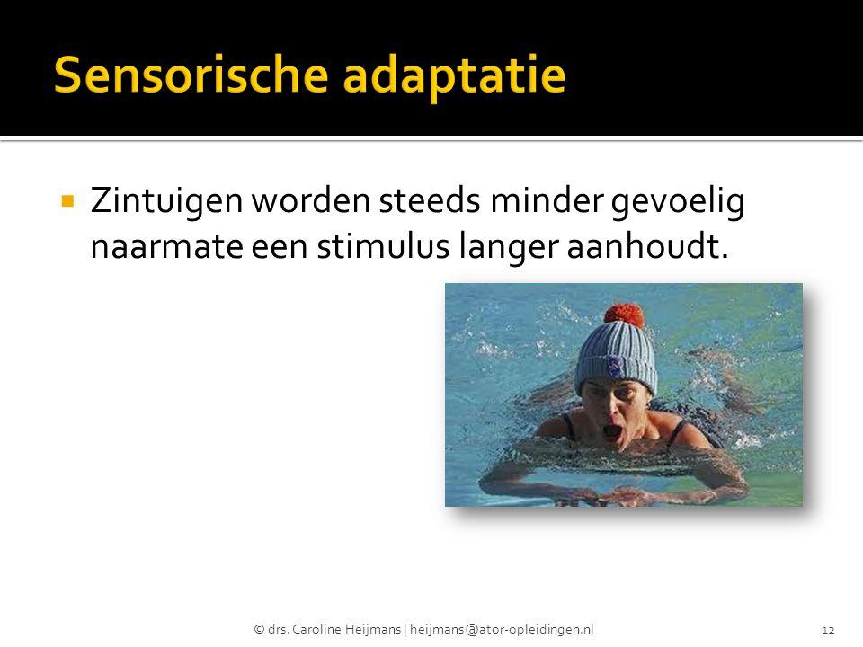  Zintuigen worden steeds minder gevoelig naarmate een stimulus langer aanhoudt. © drs. Caroline Heijmans | heijmans@ator-opleidingen.nl12
