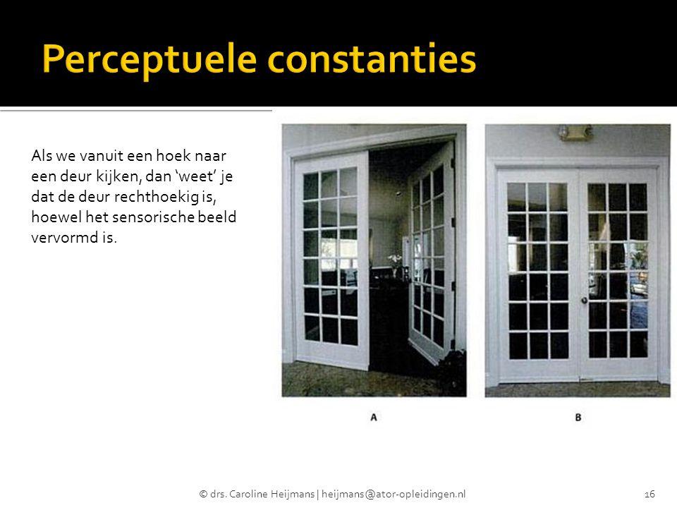 © drs. Caroline Heijmans | heijmans@ator-opleidingen.nl16 Als we vanuit een hoek naar een deur kijken, dan 'weet' je dat de deur rechthoekig is, hoewe