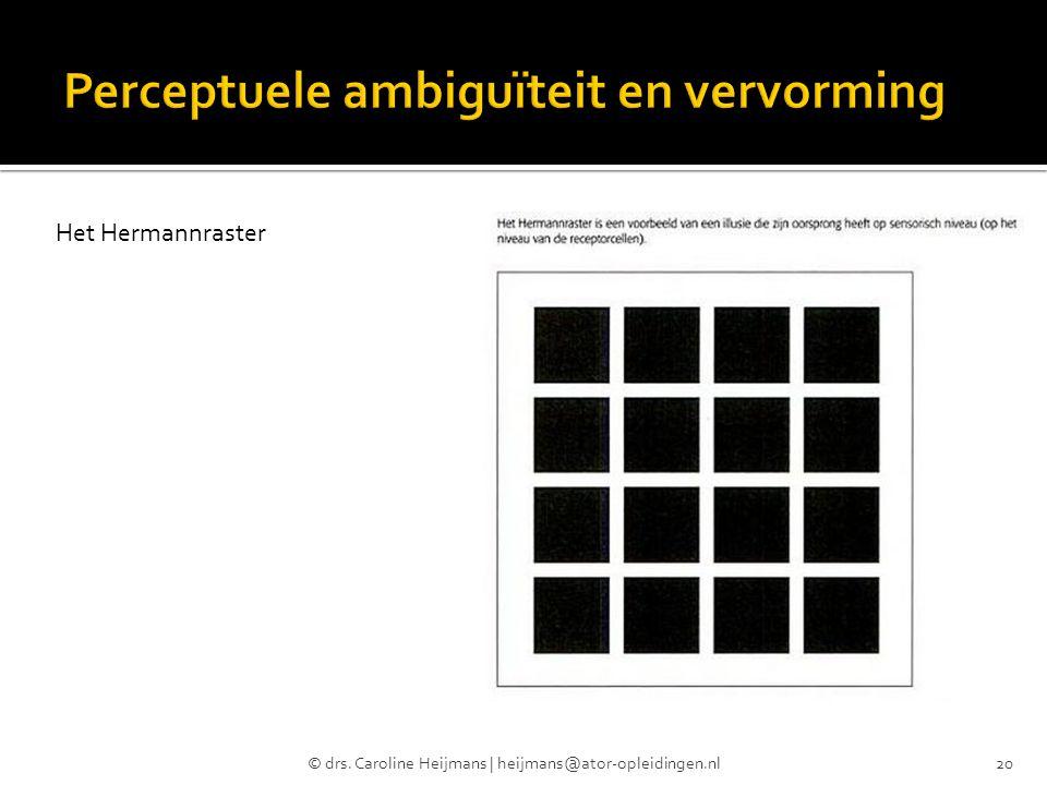 © drs. Caroline Heijmans | heijmans@ator-opleidingen.nl20 Het Hermannraster