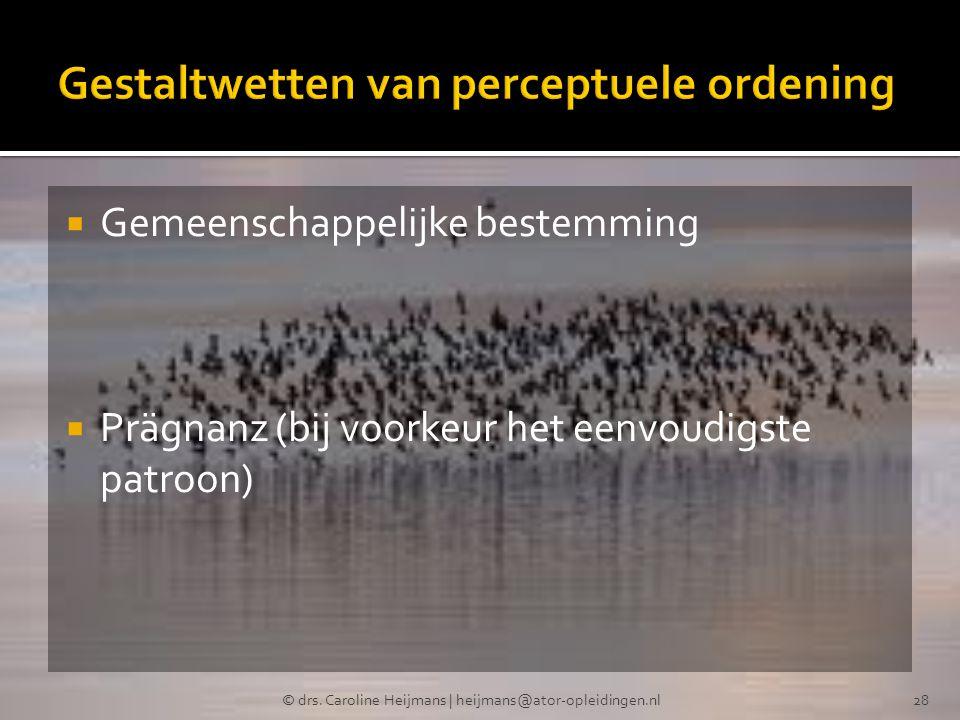  Gemeenschappelijke bestemming  Prägnanz (bij voorkeur het eenvoudigste patroon) © drs. Caroline Heijmans | heijmans@ator-opleidingen.nl28