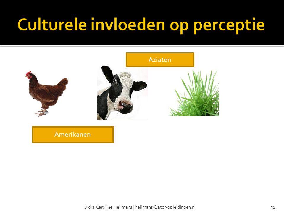 © drs. Caroline Heijmans | heijmans@ator-opleidingen.nl31 Amerikanen Aziaten