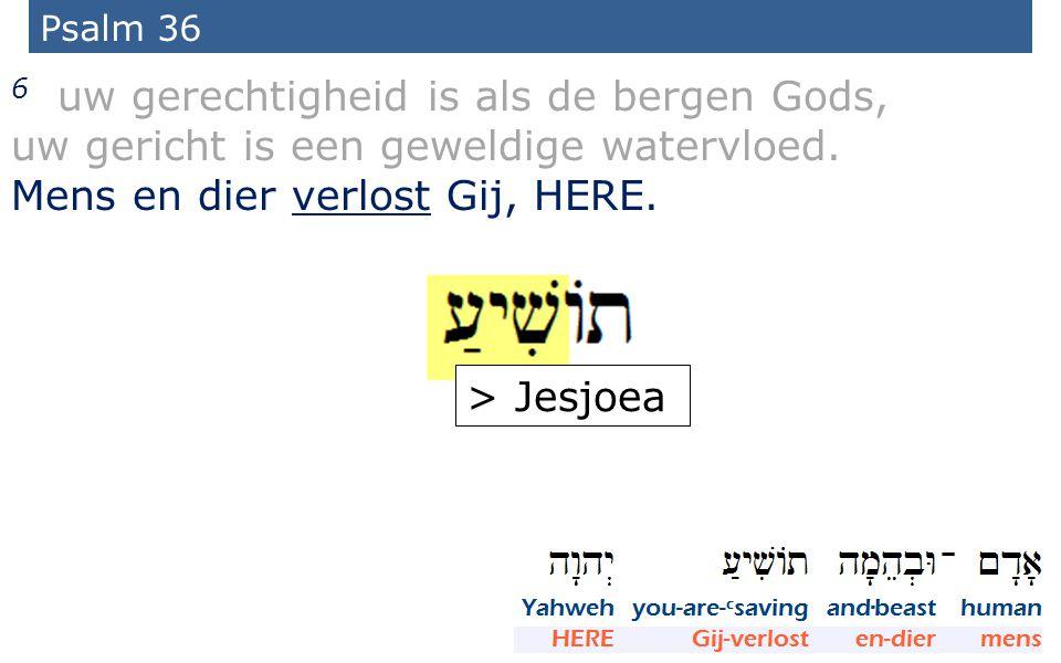 13 Psalm 36 6 uw gerechtigheid is als de bergen Gods, uw gericht is een geweldige watervloed.