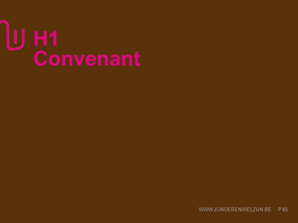WWW.JONGERENWELZIJN.BE P Praktische opstart Erkenningsbesluit Convenant (werkingsgebied – innovatie) 46